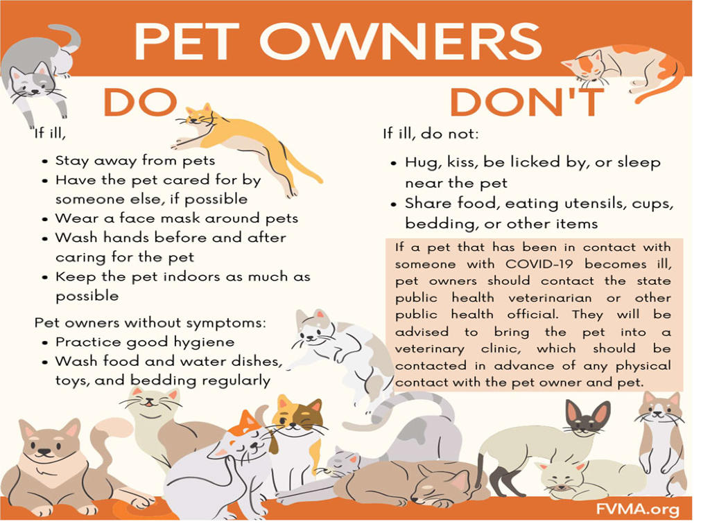 Pet Owners Do''s and Don''ts for Corona Virus | COVID-19
